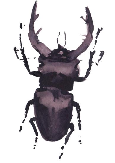 art prints - Funny bug by Marina Eiro