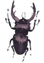 Funny bug by Marina Eiro