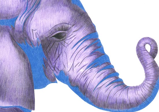 art prints - Colorful Creatures by Jennifer Weed