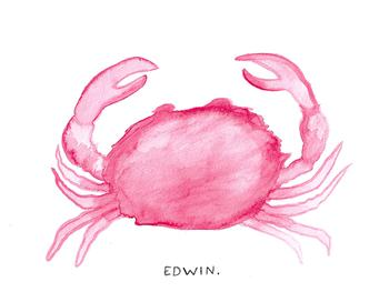 Edwin the Crab