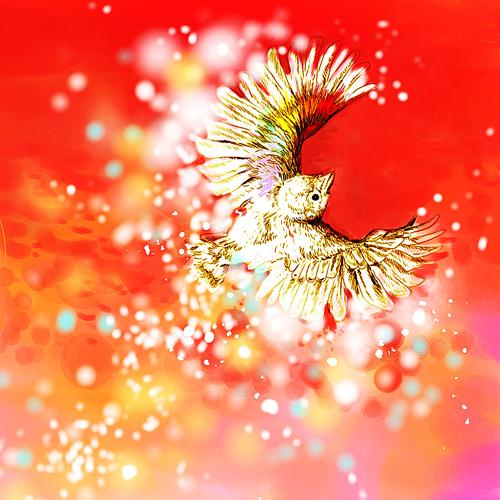 art prints - Lucky Rainbow Bird by Shom Teoh