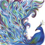 Whimsical Peacock by Meg Smiley