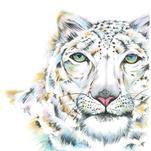 Diamond-eyed Leopard by Meg Smiley