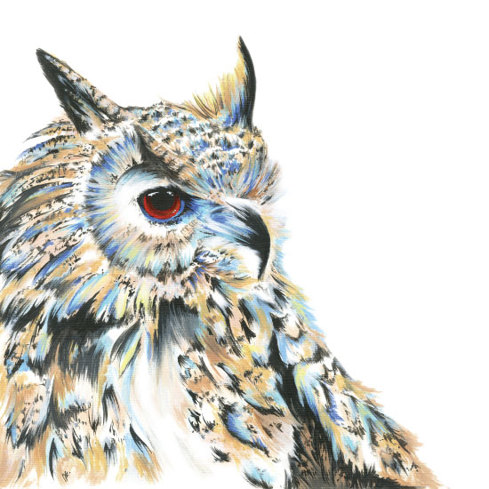 art prints - Bright-eyed Owl by Meg Smiley