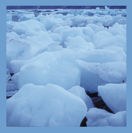 art prints - Ice Jam by Kairnz Design