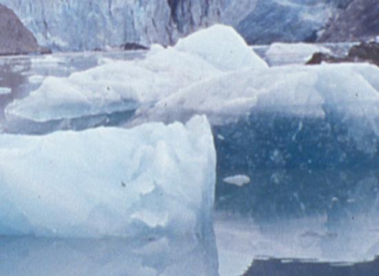 art prints - Iceberg Pillow by Kairnz Design