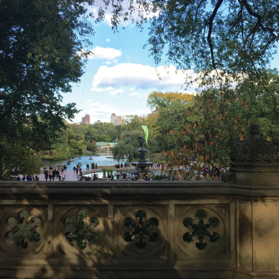 art prints - A view from the Bridge in Central Park. by Pam Ansted Uller