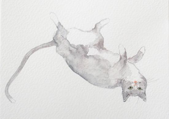 art prints - Gracie by Nina Lewis
