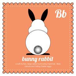 behind the animal, bunny