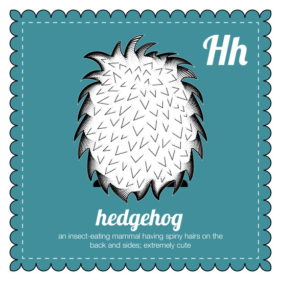 art prints - behind the animal, hedgehog by Jenna Pennell