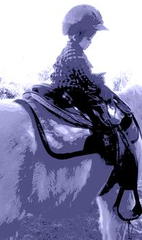 Triptych Equestrian Young Rider - Blue, Facing Right