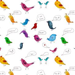 Bird's talk