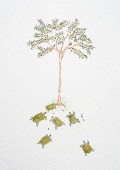 art prints - Olive Tree Tortoise Gathering by Nina Lewis