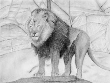 """Lion: Part of the """"Oh My!"""" Series"""