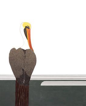 Pelican at Rest