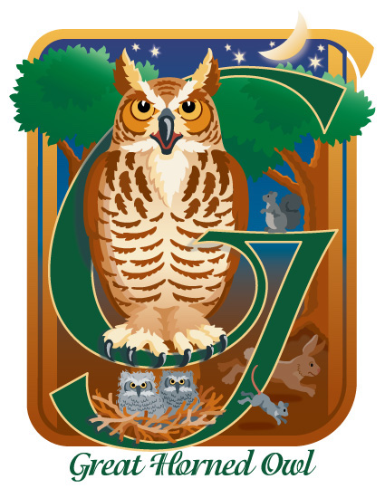 art prints - G is for Great Horned Owl by Barbara Ball