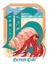 H is for Hermit Crab by Barbara Ball