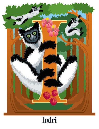 art prints - I is for Indri by Barbara Ball