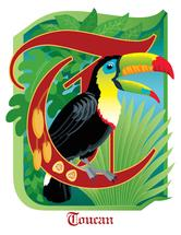 T is for Toucan by Barbara Ball