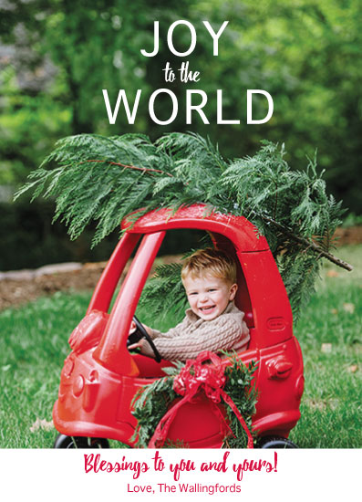 holiday photo cards - Joyful World by Rebecca Lowe