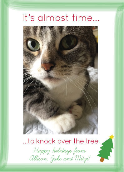 holiday photo cards - Time to knock over the tree by MJ Roebuck