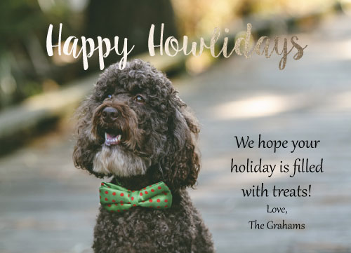 holiday photo cards - Happy Howlidays by Icon Invitations