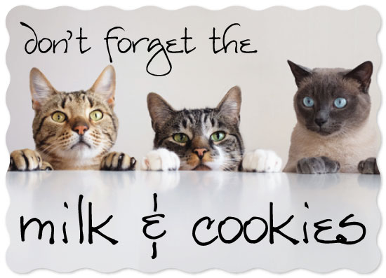 holiday photo cards - MilkAndCookies by Christine Arrigo