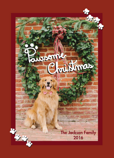 holiday photo cards - Pawesome Christmas by Juliana Motzko