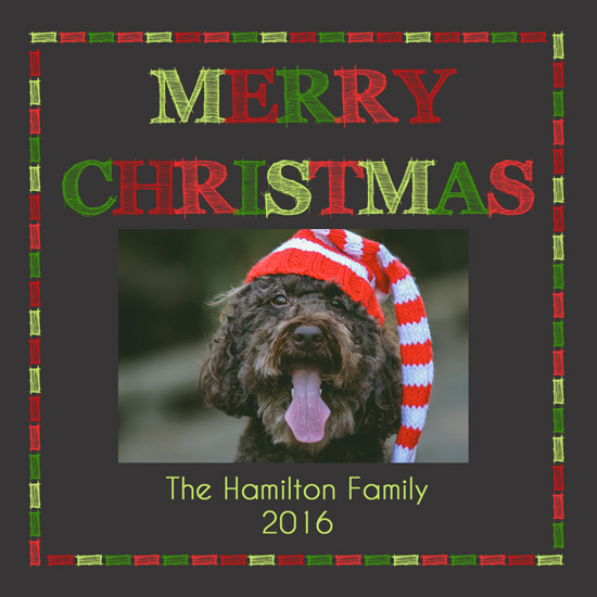 holiday photo cards - Family Dog Says Merry Christmas by Lindsey Kelly