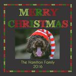 Family Dog Says Merry C... by Lindsey Kelly