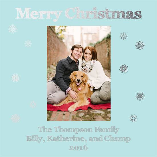 holiday photo cards - Snowflake Frenzy by Lindsey Kelly