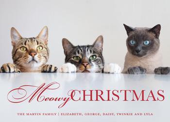Classic Meowy Christmas