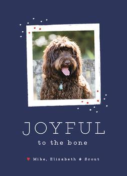 Joyful to the Bone