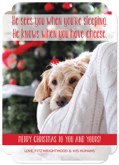 holiday photo cards - Santa Fitz by Lauren Fortinberry