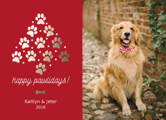 holiday photo cards - Paw Christmas Tree by Kailyn Glassmacher