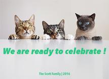 we are ready to celebra... by Abeer Mohamed