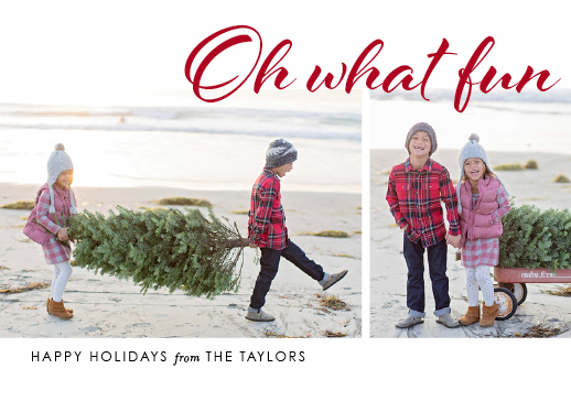 holiday photo cards - Fun Holiday by Alison McGown