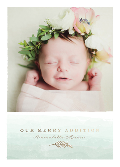holiday photo cards - merry little addition by Karidy Walker