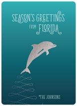 Christmas Dolphin by illustrata.design