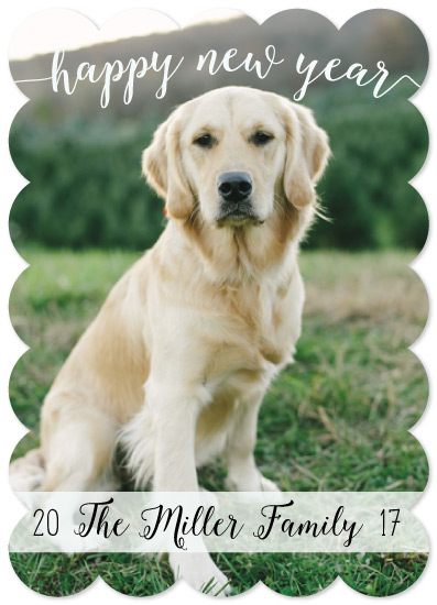 new year's cards - New Year | New Pup by Emily Ripka