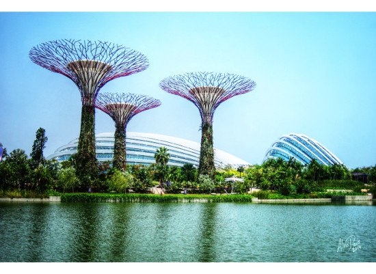 art prints - Supertrees, greenhouses and lake by Alina Davis