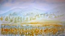 Happy Fields by Laura Alvarez