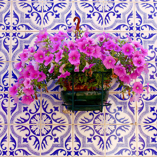 art prints - Azulejo Tiles of Portugal by LindseyErin