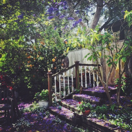 art prints - California Garden by Jessica Enlow