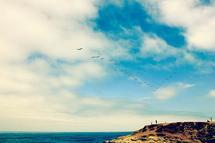 Flying V by LindseyErin