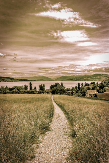 art prints - Towards the lake by Peter Stein