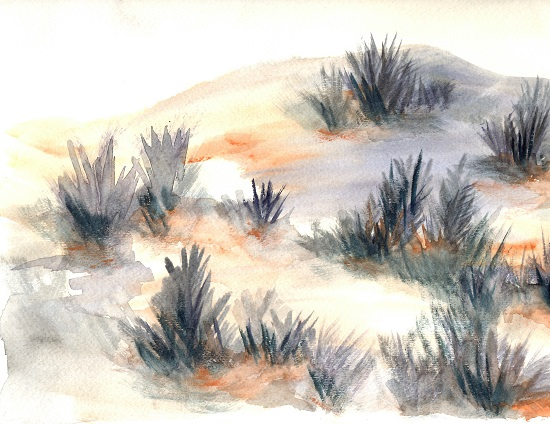 art prints - Desert Sage by Jena Burkman