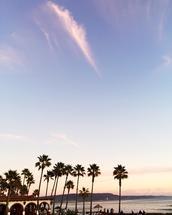New Years in Baja by Mackenzie Lynch