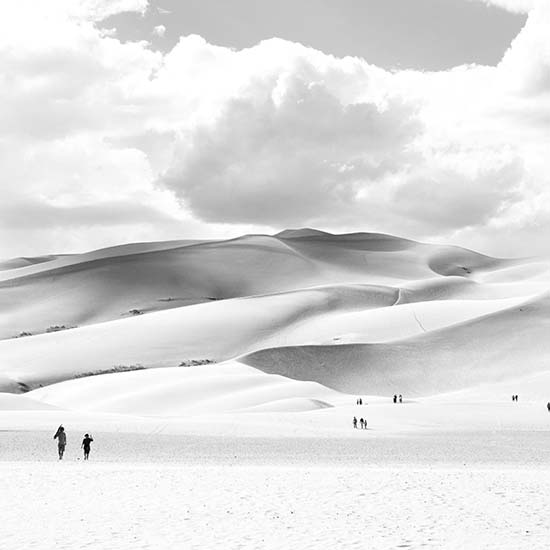 art prints - Dunes by Calais Le Coq