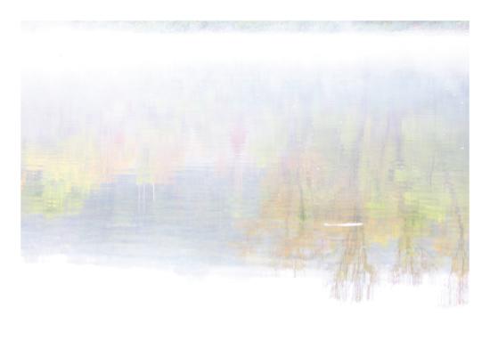 art prints - Reflection in the mist by Debbie Fieno